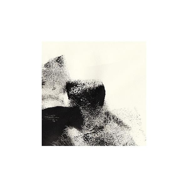 Tim Catinat - Acrylic on paper