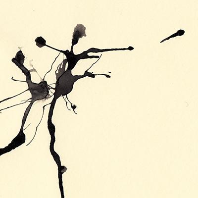 Tim Catinat - Dancer